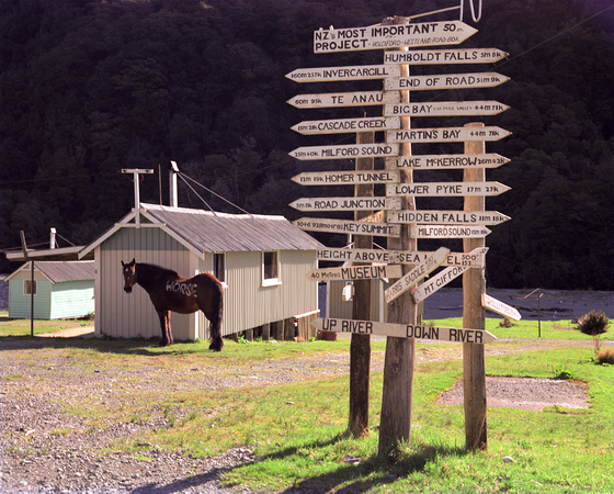 well signposted, new zealand 1989